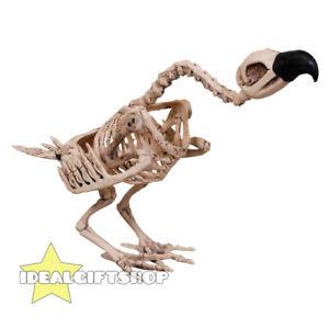 Vautour-animal-squelette-oiseau-halloween-horreur-fete-decoration-prop-os