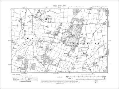 Old map of Hales, Raveningham, Norfolk in 1907: 89SW repro