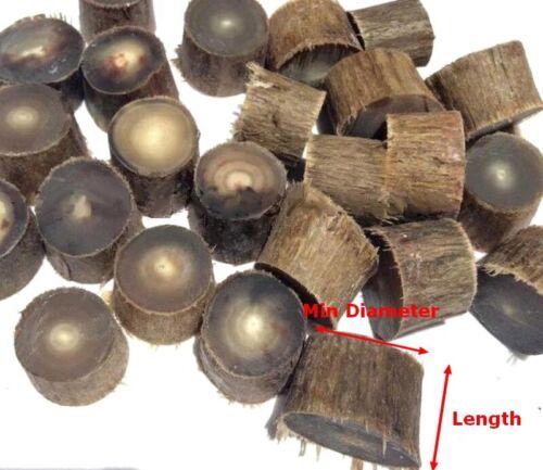 5x Natural Tibet Yak Horn Cut Section DIY Beads Charms Raw Materials