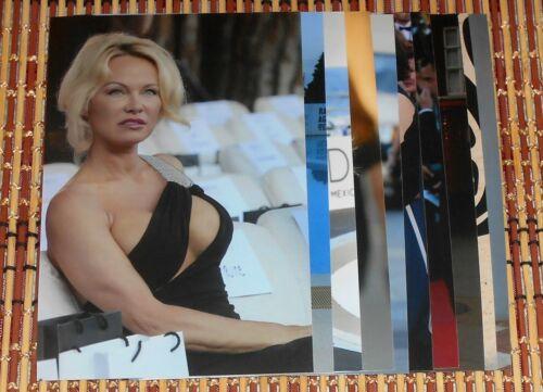 Pamela Anderson 4x6 Photo Set Top 10 Photos HQ  # 8