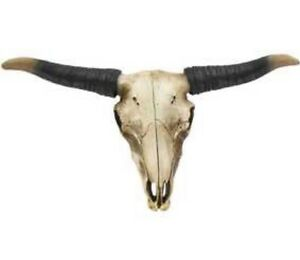 Bull Skull Wall Decor extra-large-bull-skull-w-horns-wall-decor-western-cowboy-tribal