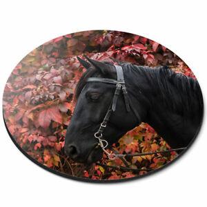 ROUND Tappetino Mouse-nero BELLISSIMO CAVALLO pony animali ufficio regalo #8774