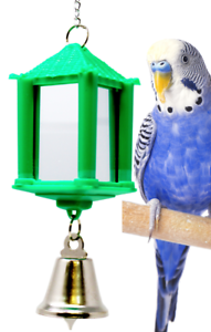 1426 MIRROR BIRD TOY cockatiels parakeets finch toys canaries cage cages budgie