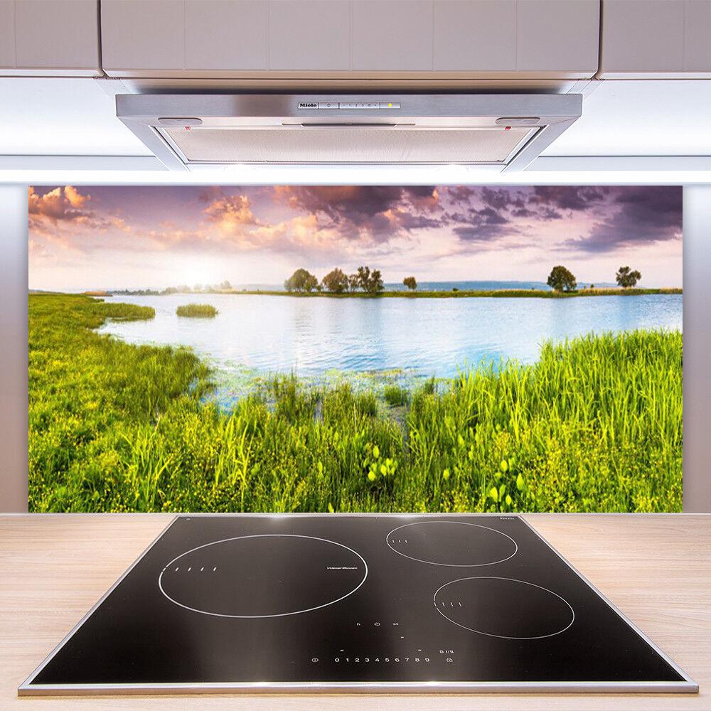 Crédence de cuisine en verre Panneau Paroi 100x50 Nature Lac Herbe