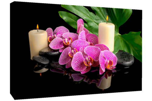 A0 A1 A2 Pink Orchid Flowers Black Zen Stones Canvas Wall Art Picture Print