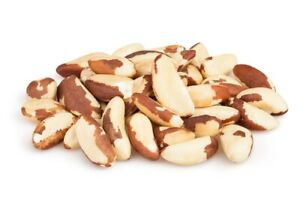 Brazil-Nuts-Whole-Premium-Quality-Raw-amp-Unsalted-Noshell-2-LB-Free-Shipping