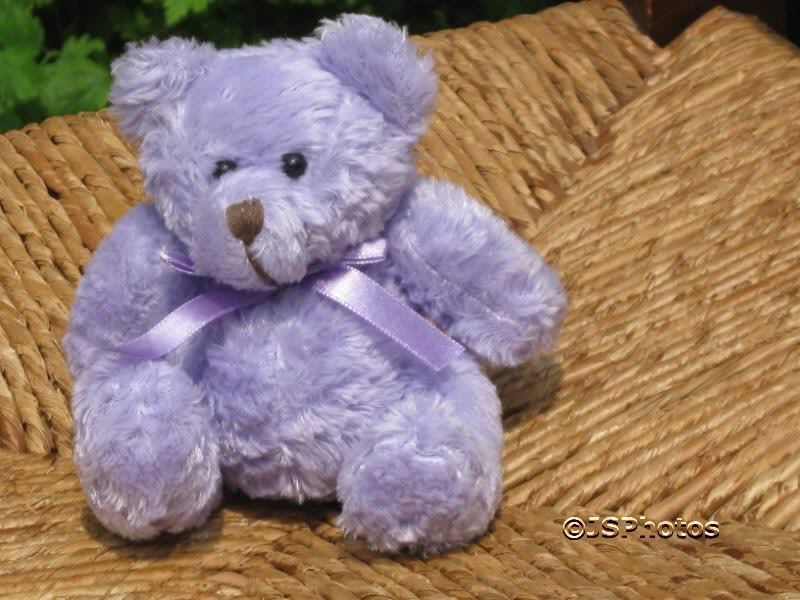 Elizabeth French UK Collectible lila Bear