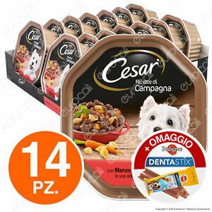 Cesar Ricette di Campagna Cibo per Cani Manzo e Verdurine - 14 Vaschette da 150g