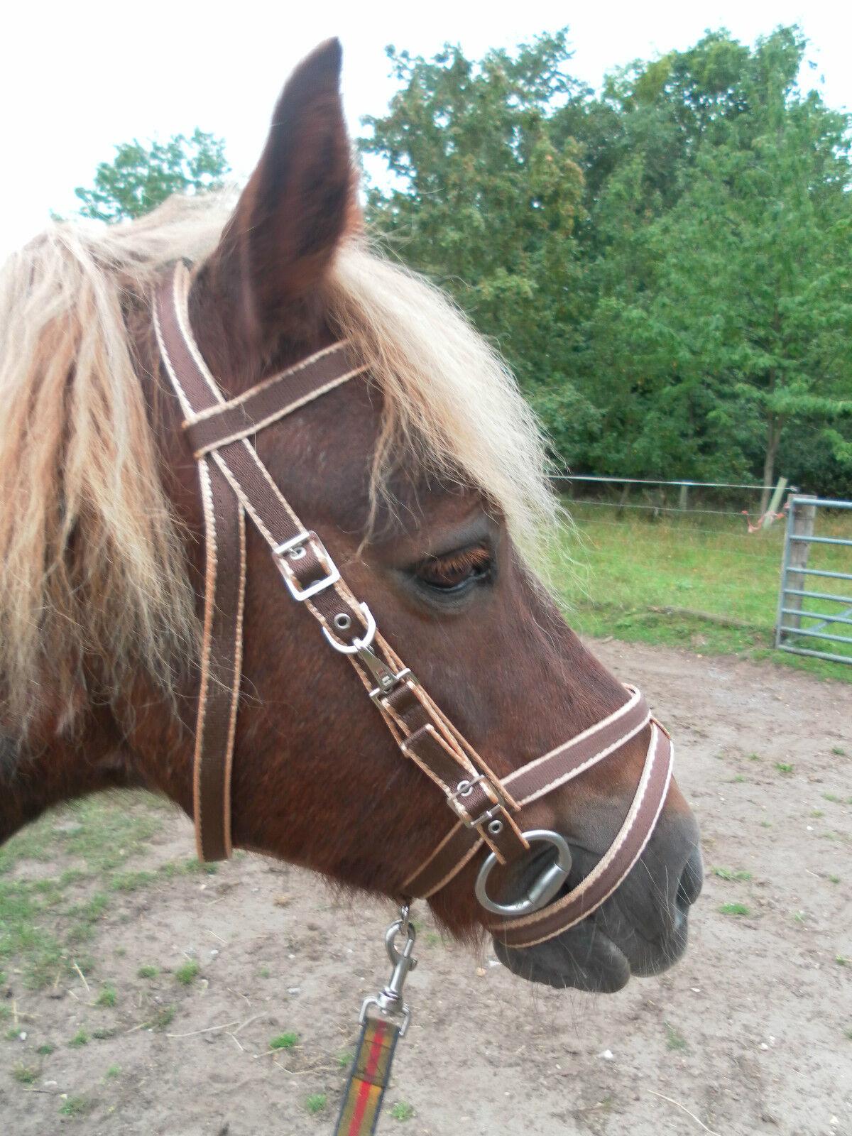 Official Libby's Exmoor Bridle Small Pony Pony Cob  Full Extra Full Horse  considerate service