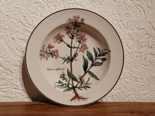 Botanica Villeroy /& Boch Suppenteller Ø 22 cm   11.2