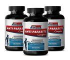 Wormwood Powder - Anti Parasite Complex 1500mg - Black Walnut Hill Powder 3B