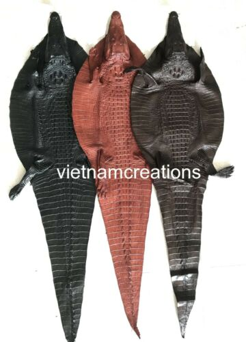 Genuine Alligator Crocodile Skin Leather Hide Pelt Hornback taxidermy Craft NEW,