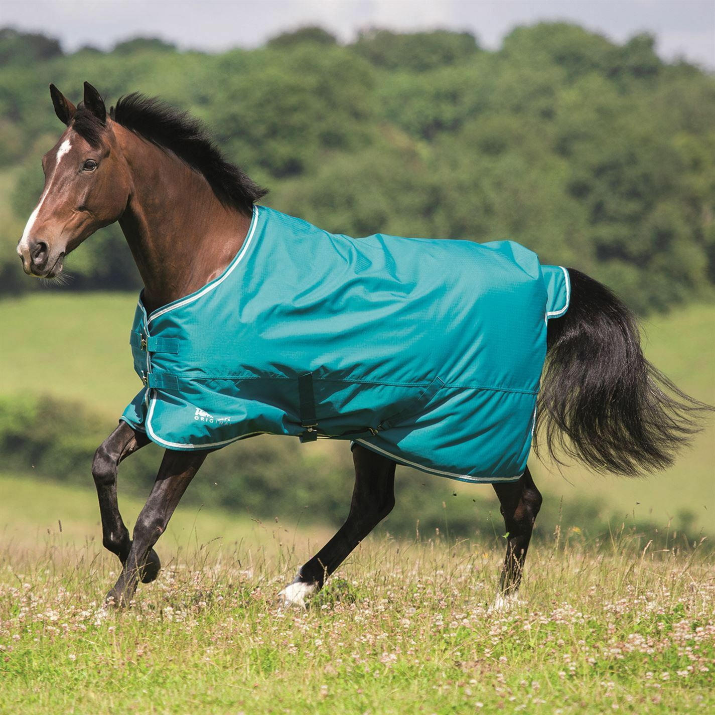 Shires  Tempest Original 50gm Turnout Unisex Horse Rug Water Repellent Ventilated  the newest brands outlet online