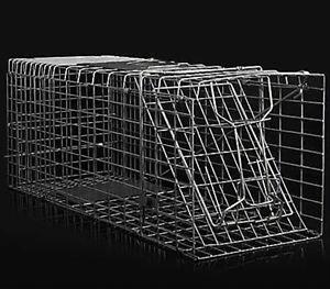 Possum-Fox-Rat-Cat-Rabbit-Bird-Animal-Pest-Control-Trap-Trapper-Cage-Catcher