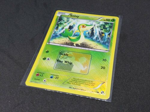 Snivy 1//114 anglais Crosshatch Ligue PROMO Pokemon Near Comme neuf