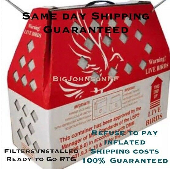 3 Horizon Shipping Boxes for Live Birds 3 Pack Chicken Poultry SHIPS FAST