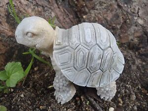 Latex-turtle-mold-plaster-cement-mould-3-034-L-x-2-5-034-H