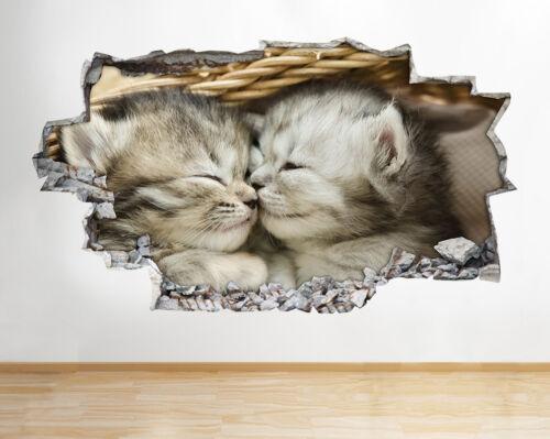 H775 Gatitos dormir lindos animales rompía la etiqueta de la pared 3D Art Stickers Vinyl Habitación