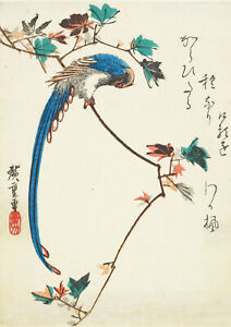 Utagawa-Hiroshige-Blue-Magpie-on-Maple-Branch-Fine-Art-Print-Poster