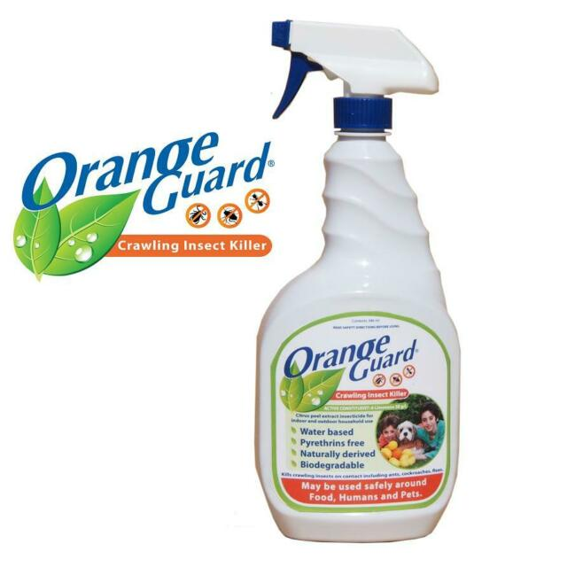 Orange Guard All Natural Insect Killer Surface Spray For Silverfish