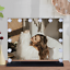 thumbnail 10 - LED Glam Hollywood Dressing Table Mirror Vanity Lighted Cosmetic Dimmable Bulb