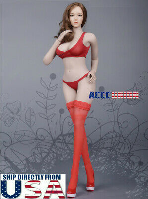 "1//6 Lace Bra Panties Stockings Lingeries Set F 12/"" PHICEN TBL Female Figure Body"