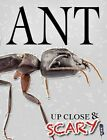 Up Close & Scary Ant by Louise & Richard Spilsbury (Paperback, 2016)