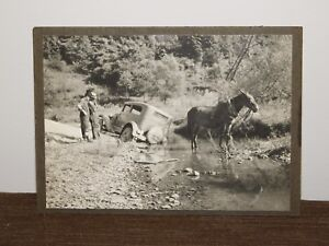 VINTAGE-6-1-2-034-X-4-3-4-034-OLD-DOUBLE-COLA-TRUCK-amp-HORSE-IN-RIVER-STREAM-PHOTO