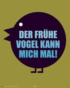 Poster by Reinders,Der Frühe Vogel Kann Mich Mal NEU Größe 40 x 50 cm Miniposter - Erlangen, Deutschland - Poster by Reinders,Der Frühe Vogel Kann Mich Mal NEU Größe 40 x 50 cm Miniposter - Erlangen, Deutschland