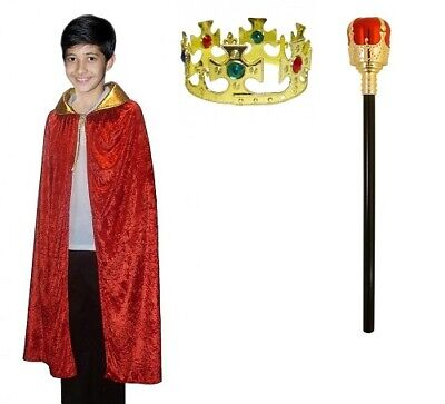 Adult Gold King Crown 59 cm Plastic With Jewels Boys Fancy Dress Party Headpiece