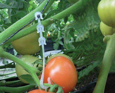 Vegetable Garden Tomato Trellis J Hooks - 150 Pcs