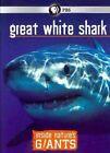 Inside Nature S Giants Great White SH 0841887016544 DVD Region 1