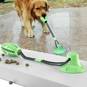 Interactive Rubber Pet Molar Bite Floor Suction Cup Dog Balls Puppy Chew Toy AUS