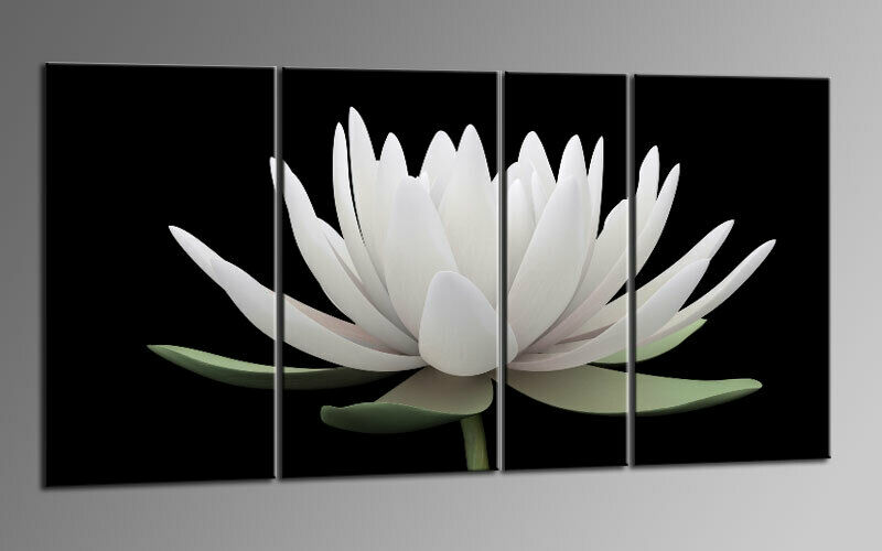PRETTY LILLY BLOOM Leinwand 4 BILDER Wandbild D01012 MEGA XXL LIVING ART