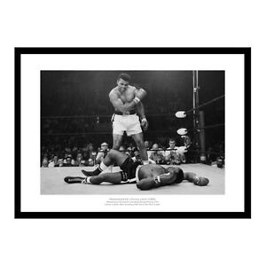 Muhammad-Ali-v-Sonny-Liston-039-Greatest-Sporting-Photo-039-1965-Boxing-Memorabilia