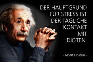 Albert-Einstein-Spruch-17-Blechschild-Schild-gewoelbt-Metal-Tin-Sign-20-x-30-cm