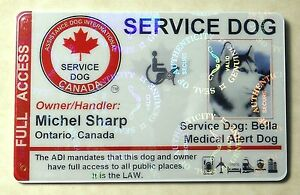 HOLOGRAPHIC-CANADA-SERVICE-DOG-ID-CARD-BADGE-ADI-LAW-ASSISTANCE-ANIMAL-TAG-22