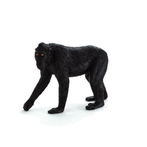 BLACK Crested MACACHI-Mojo Animal Planet Fauna Selvatica Figura 387182