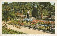 Postcard Florida Vero Mrs. EC Walker's Flower Garden Indian River Farms 1915-25