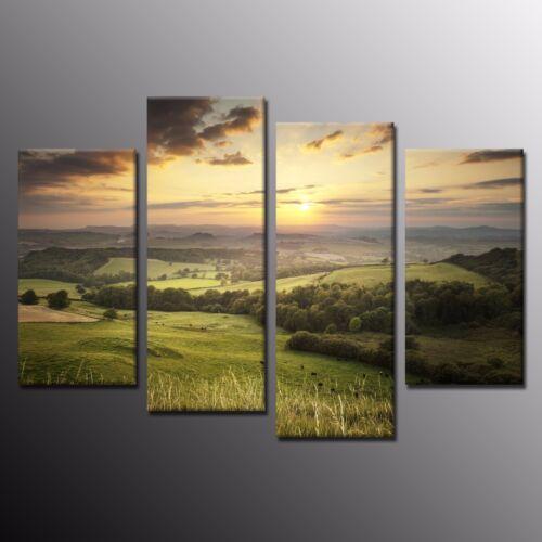 Modern Large Wall Art Decor Grassland Sunset Canvas Prints Painting Picture-4pcs