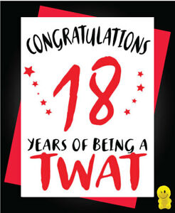 Funny Rude Birthday Card 18th Birthday You are on your own C264