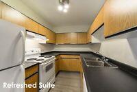 2 Bedroom - 12004 162 Ave. NW Edmonton Edmonton Area Preview