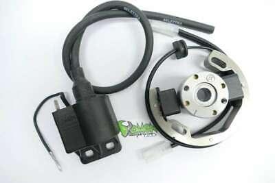Selettra mini Stator for KTM SX 50 Minicross R2904 mit Langloch zum Verstellen