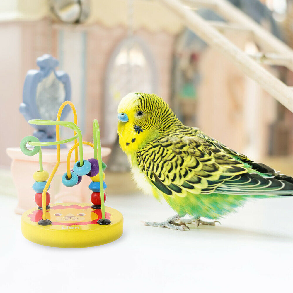 2Pcs Parrot Toys Funny Fine Durable Novel Plaything Bead Chew Toy