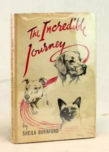 Shelia Burnford First Edition 1961 The Incredible Journey Homeward Bound Movie