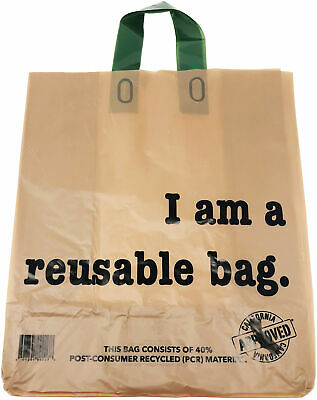 """12""""l X 6.75""""w X 14""""h As Effectively As A Fairy Does 250 Count Reli Reusable Kraft Bags W/ Handle brown"""