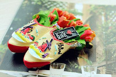 Tulips In The Wooden Shoes Amsterdam Holland Souvenir 3d Resin Fridge Magnet Ebay