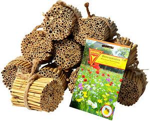 1000 bruth lsen plus samen nistr hren insektenhotel schilfrohr halme wildbienen 4055894226902 ebay. Black Bedroom Furniture Sets. Home Design Ideas