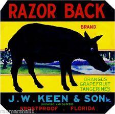 Frostproof Florida Razor Back Pig Hog Orange Citrus Fruit Crate Label Art Print