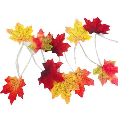 LED 2M Illuminated Autumn Fall Pumpkin Maple Leaves Garland Xmas Halloween Decor